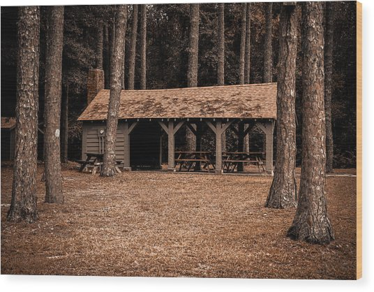 Shelter In The Woods Wood Print