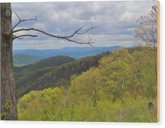 Shenandoah National Park Wood Print