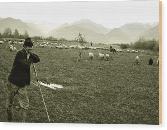 Shepherd In The Carpathians Mountains Wood Print