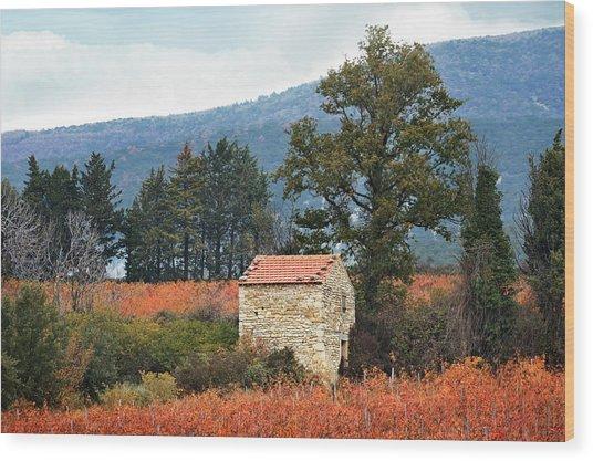 Shepherd's Hut, Provence In Autumn Wood Print