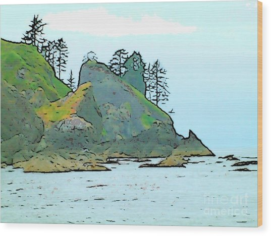 Shi Shi Beach Wood Print by Lisa Dunn