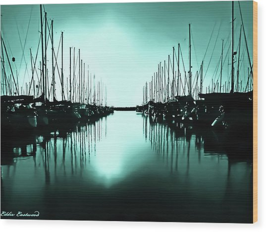 Shilshole Bay Marina In Seattle Washington Wood Print