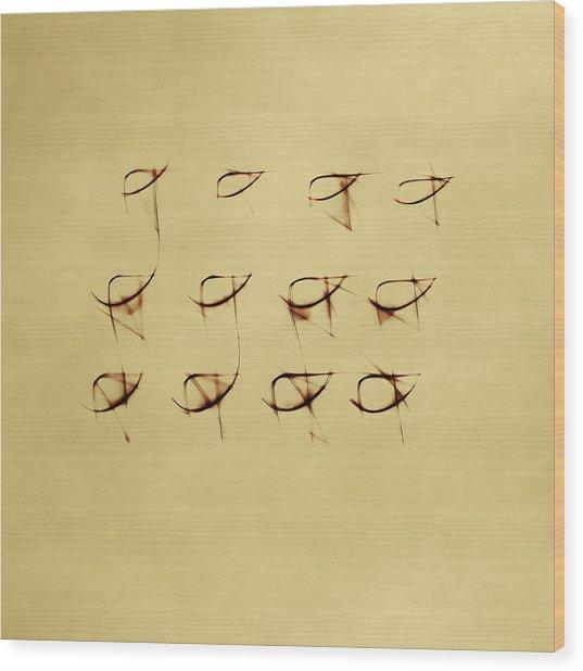 Shining  Twelve Wood Print