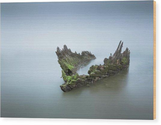 Ship Wreck  Wood Print