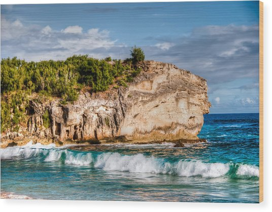Shipwreck Beach Wood Print