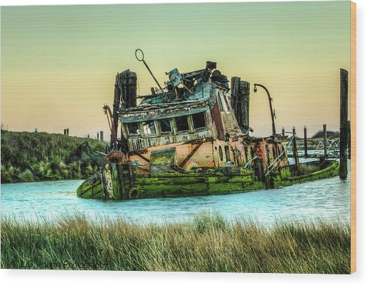 Shipwreck - Mary D. Hume Wood Print
