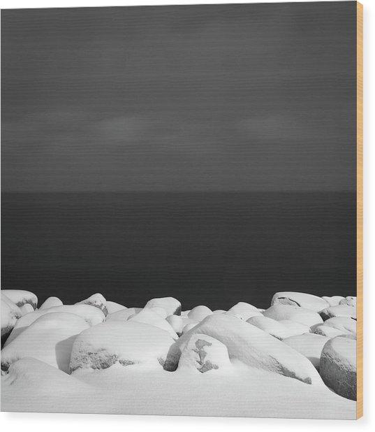 Shore Wood Print by Michael Lerman