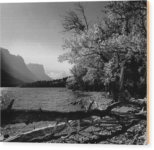 Shoreline Black And White Wood Print