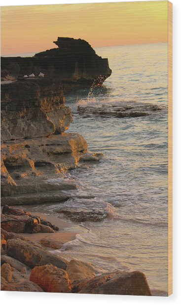 Shoreline In Bimini Wood Print