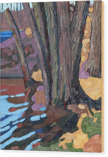Shoreline Maples Wood Print