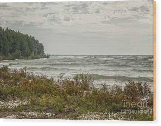 Shoreline Wood Print