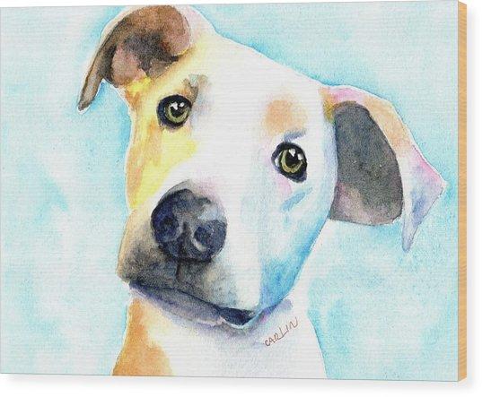 Short Hair White And Brown Dog Wood Print