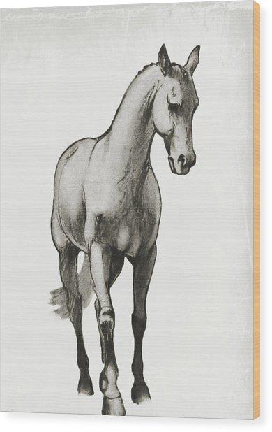 Shoulder-in Sketch Wood Print by JAMART Photography