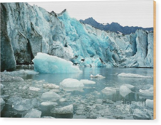 Shoup Glacier Wood Print by Frank Townsley