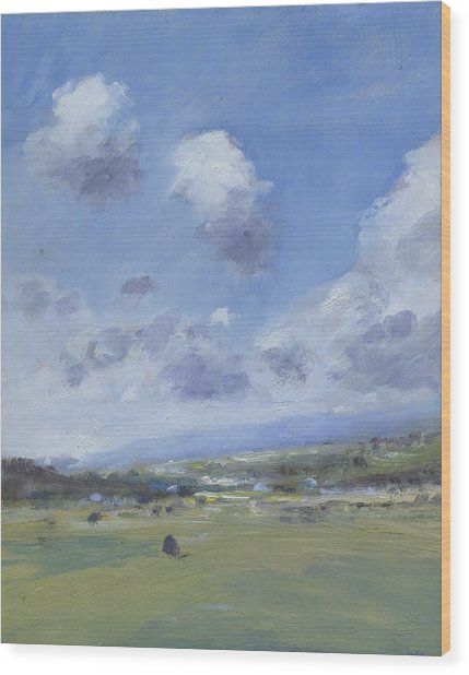 Shower Clouds Over The Yar Valley Wood Print by Alan Daysh