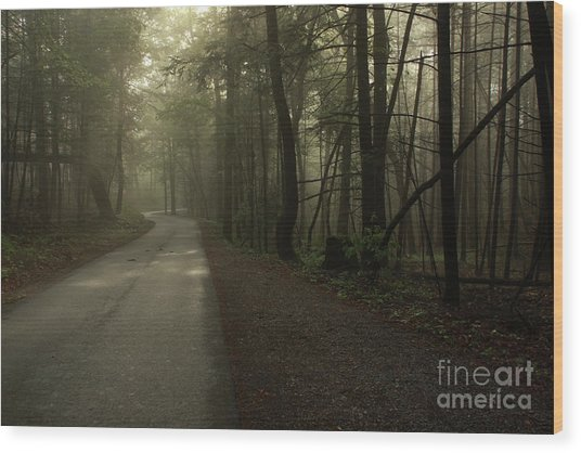Shrouded Path Wood Print by J L  Gould