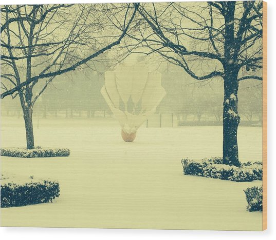 Shuttlecock In The Snow Wood Print