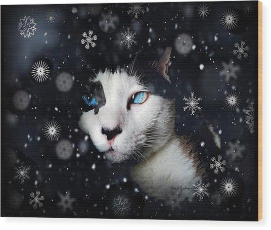 Siamese Cat Snowflakes Image   Wood Print