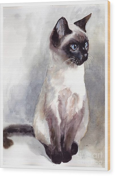 Siamese Kitten Portrait Wood Print