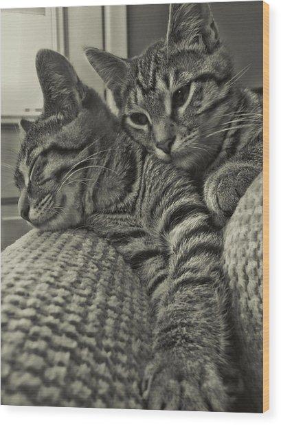 Siblings Wood Print by JAMART Photography