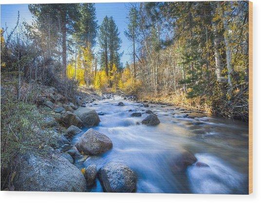 Sierra Mountain Stream Wood Print