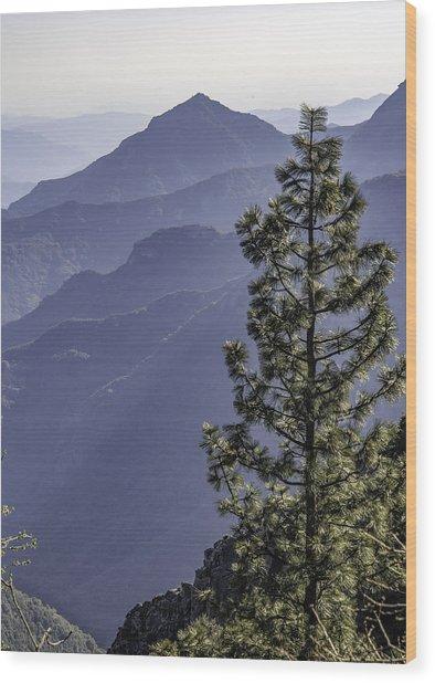 Sierra Nevada Foothills Wood Print