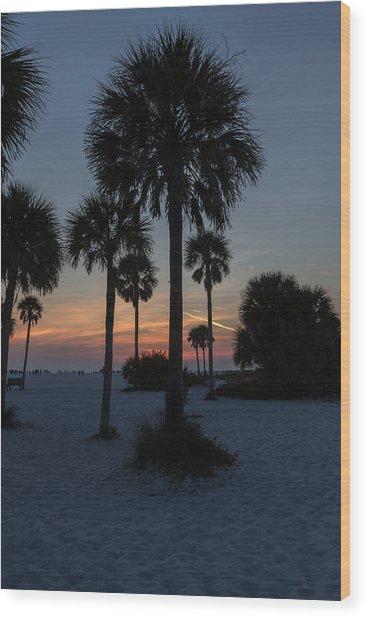 Siesta Beach Wood Print