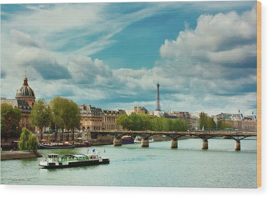 Sightseeing On The River Seine Wood Print