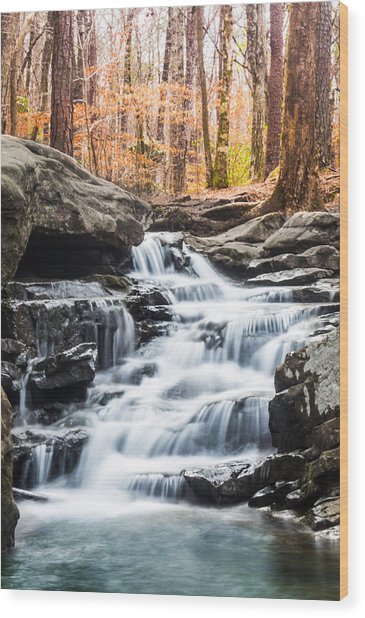 Autumn At Moss Rock Preserve Wood Print