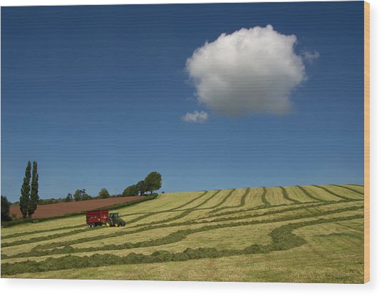 Silage Making  Wood Print