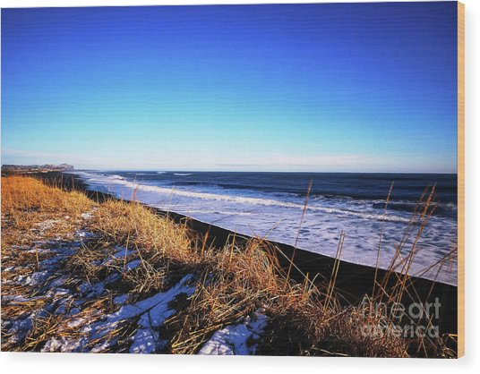 Silence At Black Sand Beach Wood Print