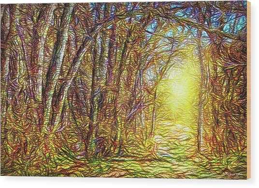 Silence Of A Forest Path Wood Print