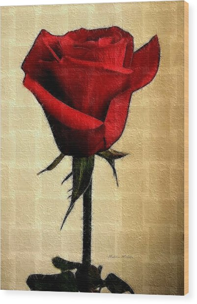 Silent Love Wood Print by Madeline  Allen - SmudgeArt