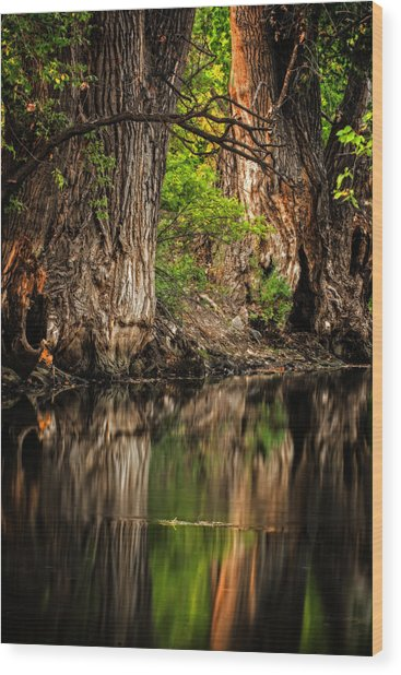 Silent River Wood Print
