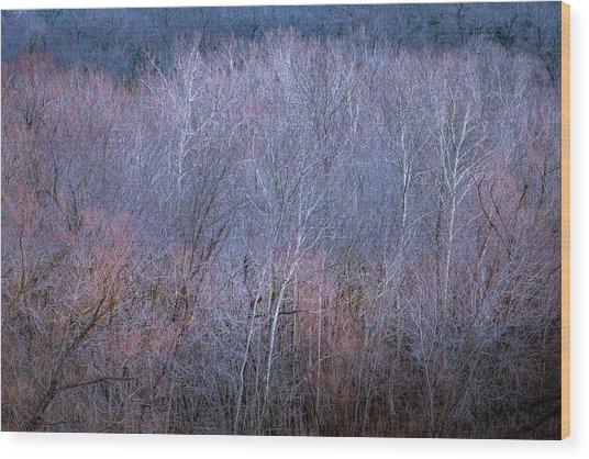 Silent Trees Wood Print