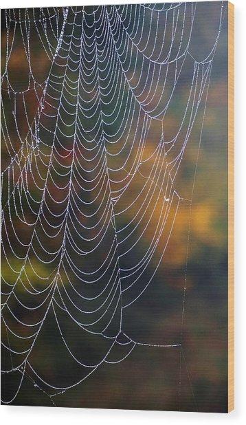 Silken Threads Wood Print