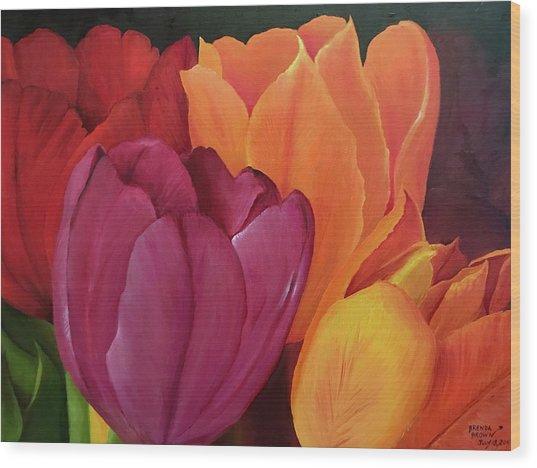 Silky Tulips Unite  Wood Print