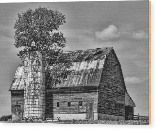 Silo Tree Black And White Wood Print
