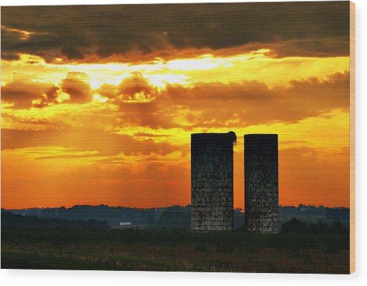 Silos At Sunset Wood Print