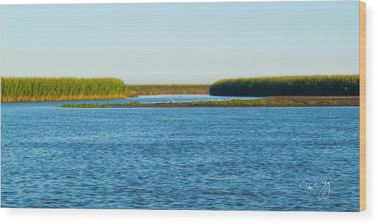 Silt Islands And Banks Mississippi River Delta Louisiana Wood Print