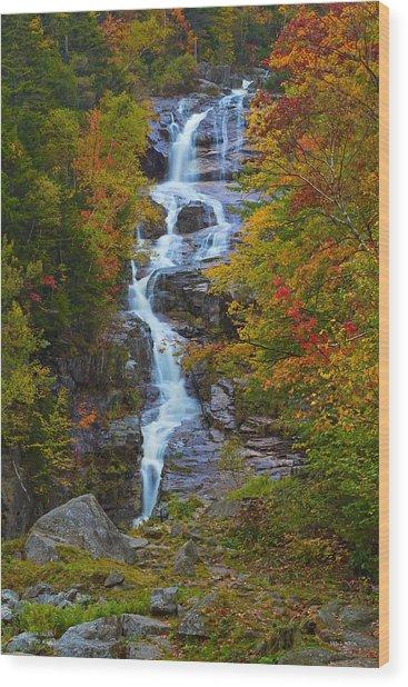 Silver Cascade Wood Print
