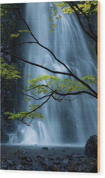 Silver Fall Wood Print