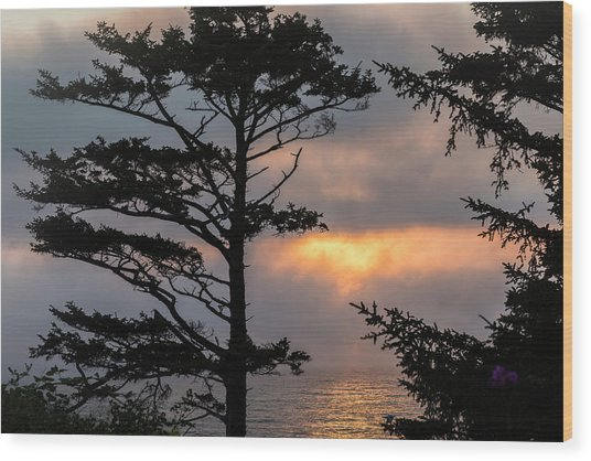 Silver Point Silhouette Wood Print