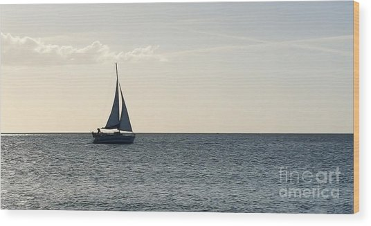 Silver Sailboat Wood Print