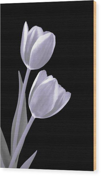 Silver Tulips Wood Print