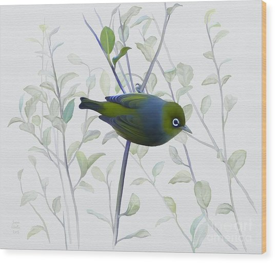Wood Print featuring the painting Silvereye by Ivana Westin