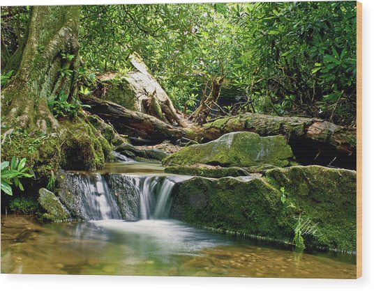 Sims Creek Waterfall Wood Print