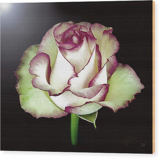 Single Beautiful Rose Wood Print