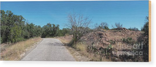 Single Lane Road In The Hill Country Wood Print