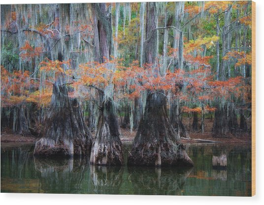 Sisters Wading Wood Print